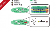 """Our newest publication entitled """"Biocatalytic polymer thin films: Optimization of the multilayered architecture towards in situ synthesis of anti-proliferative drugs"""" has been published in Nanoscale."""