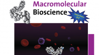 Our recent work on macromolecular prodrugs of ribavirin has been featured on the front cover of Macromolecular Bioscience.