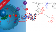New publication in Molecular Pharmaceutics with the title Triple Activity of Lamivudine Releasing Sulfonated Polymers against HIV-1 In this paper a library of polymeric therapeutic agents against the human immunodeficiency […]