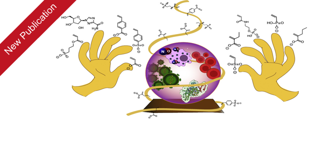 Our recent publication Macromolecular prodrugs of ribavirin: Polymer backbone defines blood safety, drug release, and efficacy of anti-inflammatory effects has been published in Journal of Controlled Release. Macromolecular (pro)drugs hold […]
