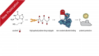 "Our work ""Non-covalent hitchhiking on endogenous carriers as a protraction mechanism for antiviral macromolecular prodrugs"" has been published in the Journal of Controlled Release. Albumin is a highly successful tool […]"