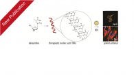 """Our work """"Nucleic Acids as a Nature‐Inspired Scaffold for Macromolecular Prodrugs of Nucleoside Analogues"""" in collaboration with Jan Münch from Ulm University has been published in Advanced Science. Macromolecular prodrugs […]"""