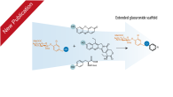 "Our work ""Extended scaffold glucuronides: en route to the universal synthesis of O-aryl glucuronide prodrug"" has been published in Organic and Biomolecular Chemistry We demonstrate that an extended scaffold based […]"