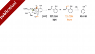 "Our work ""Nanozymes and Glucuronides: Glucuronidase, Esterase, and/or Transferase Activity"" giving mechanistic insights on the degradation of glucuronides by nanozymes has been published in Small. Nanozymes are fundamentally interesting catalysts […]"